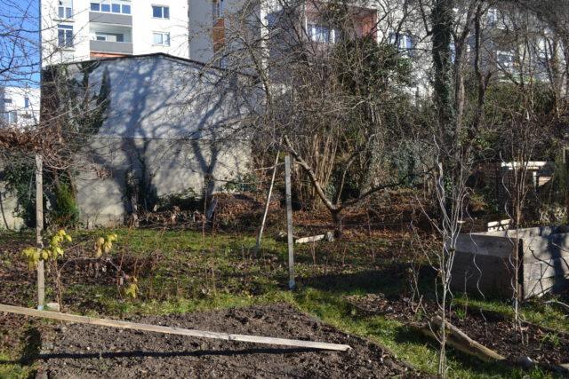 Ostseite meines Gartens
